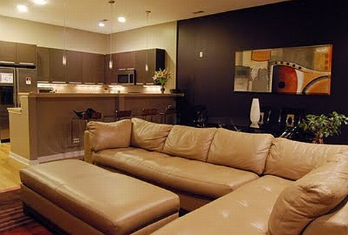 Brown living room sofa
