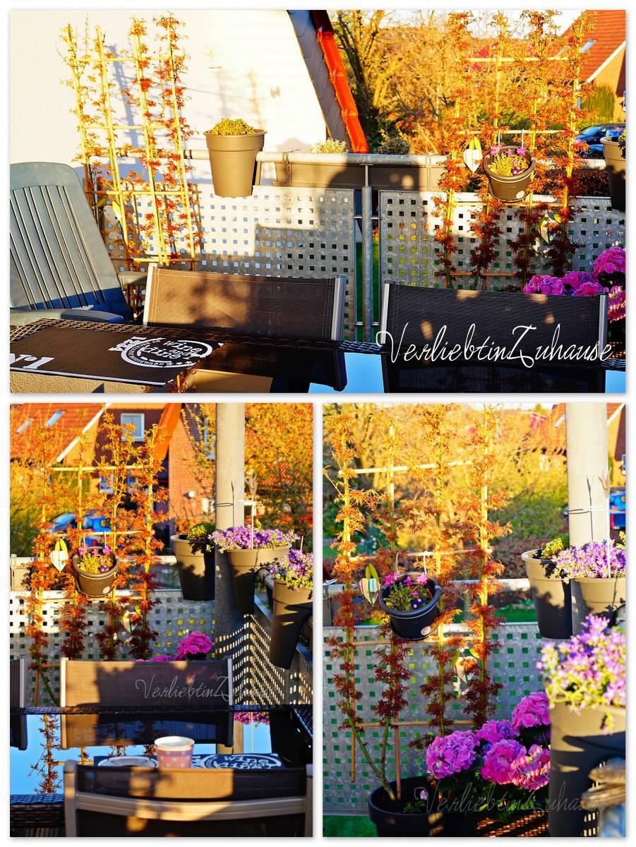 Balkon mit Tisch und Bepflanzung