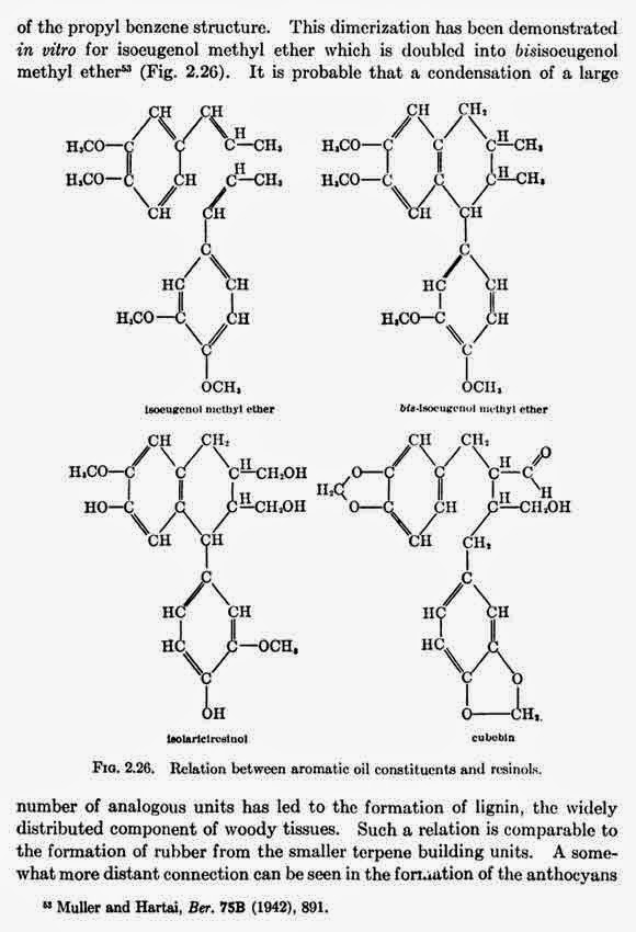 Relation between aromatic oil constituents and rcsinols.