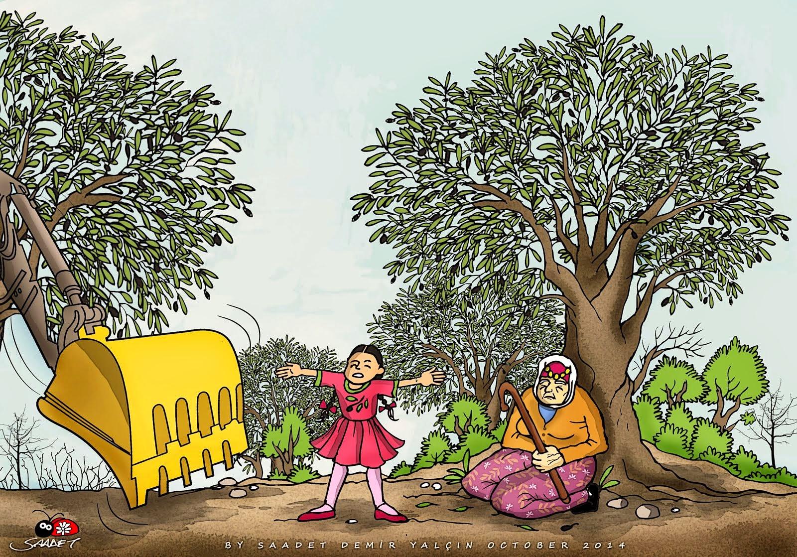Zeytin Ağacıma Dokunma!