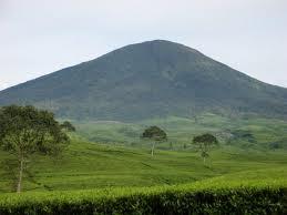 Pesona Gunung Dempo Sumatera Selatan