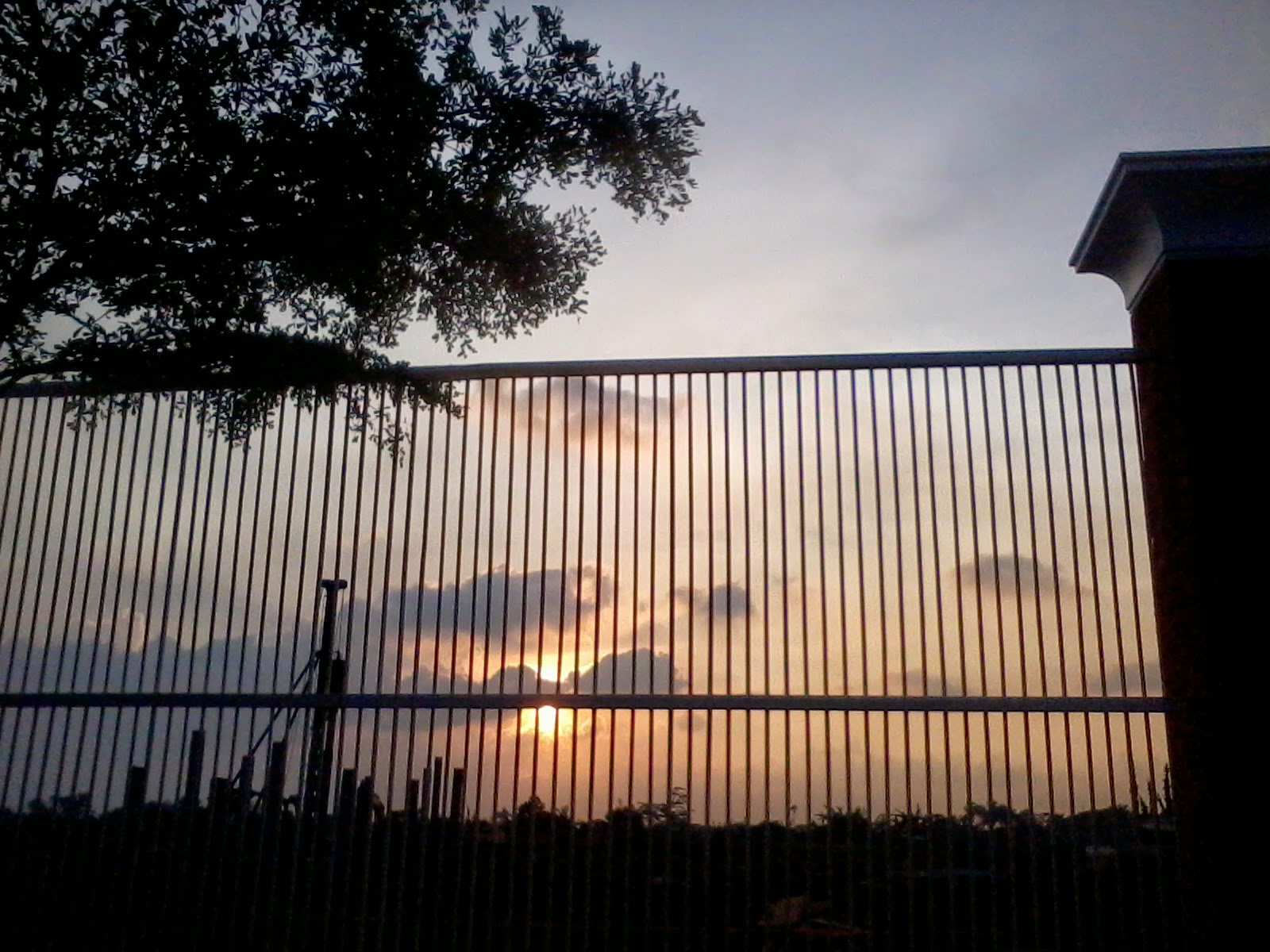 Sunset in the Fence