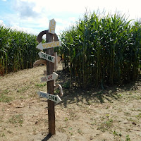 Corn Maze at Mike's Maze Warner Farm Sunderland MA_New England Fall Events
