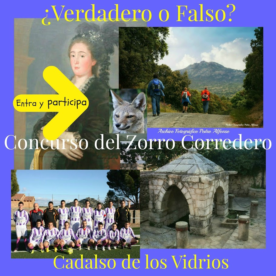 Concurso VERDADERO o FALSO