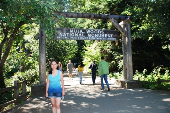 Main Entrance Of The Muir Woods National Monument 2009