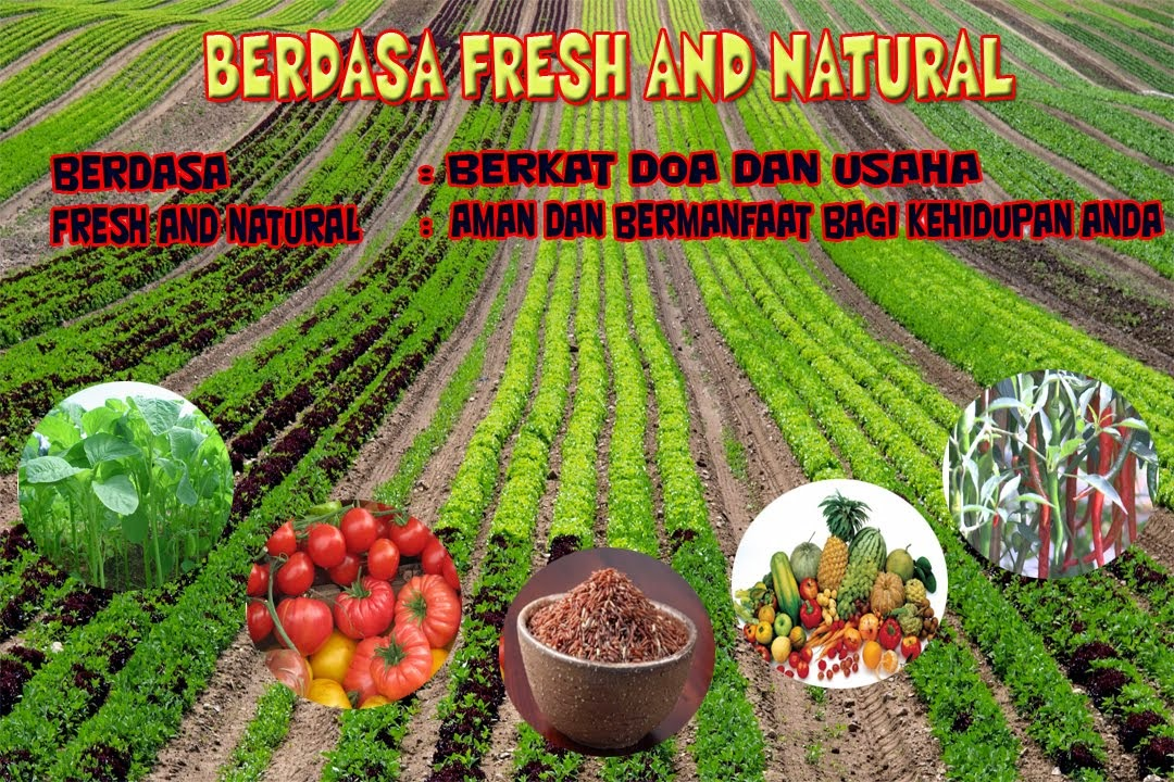 BERDASA FRESH AND NATURAL