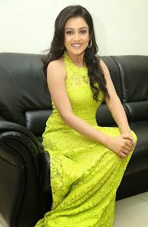 Actress Mishti Chakraborty Picture Gallery in Long Dress at Chinnadana Nee Kosam Audio Launch 7