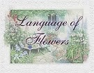 Language of Flowers Quarterly Challenge