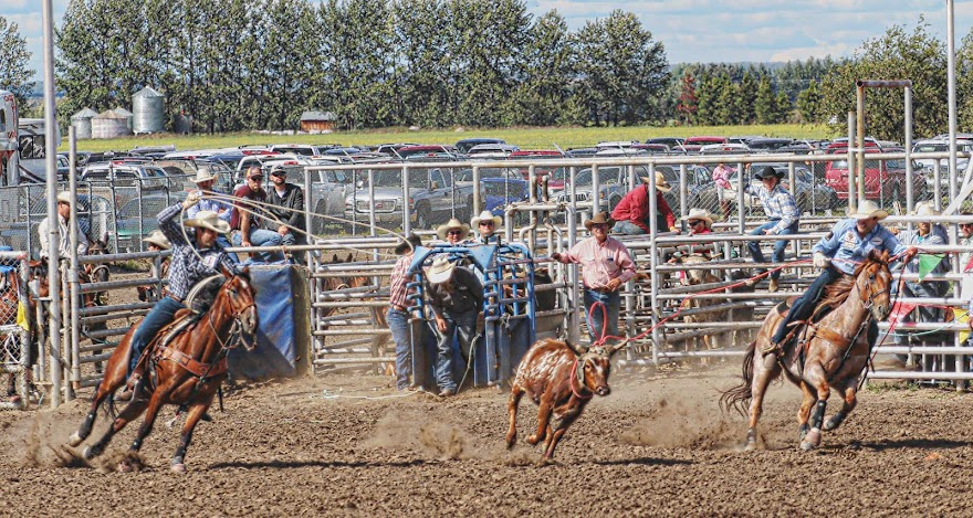 High Prairie Rodeo