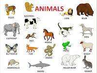 http://voliamoinsiemeallarcobaleno.blogspot.it/2015/02/animals-animals-animals.html