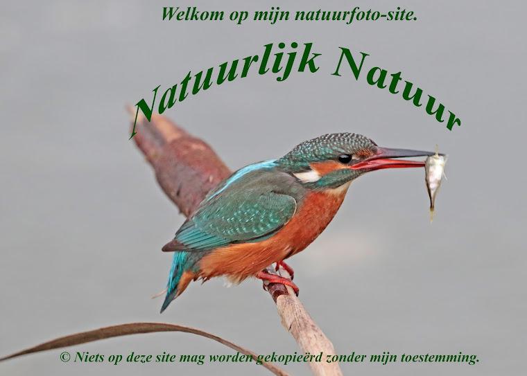NatuurlijkNatuur
