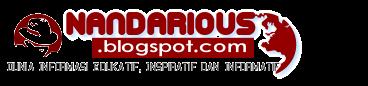 Nandarious Logo