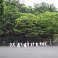 体操,新宿中央公園〈著作権フリー無料画像〉Free Stock Photos