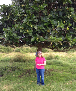 Janeal and Noni tree