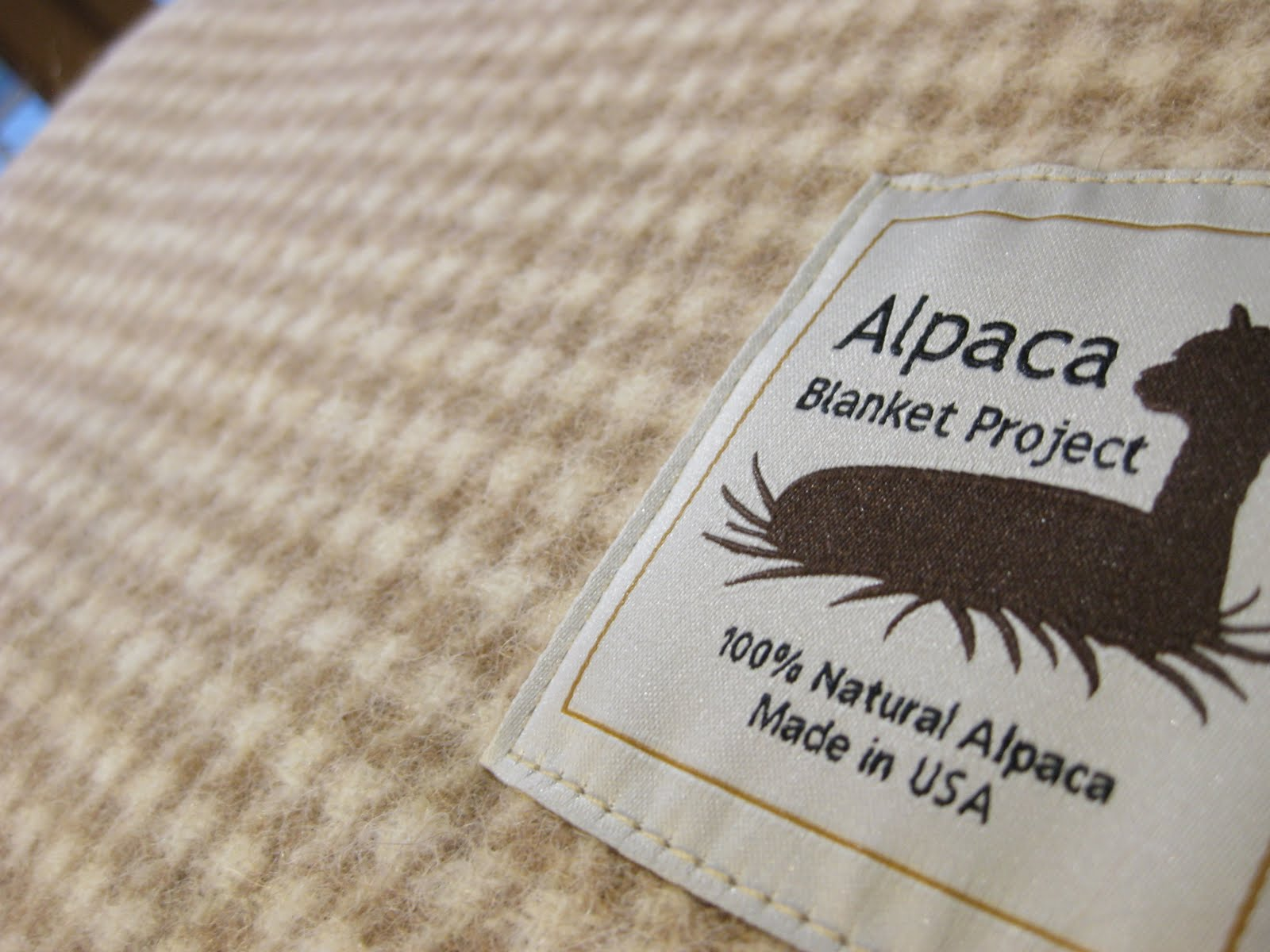alpaca blanket project Variety of solid and plaid alpaca scarves made in the usa by pendleton with 100% us bred alpaca.