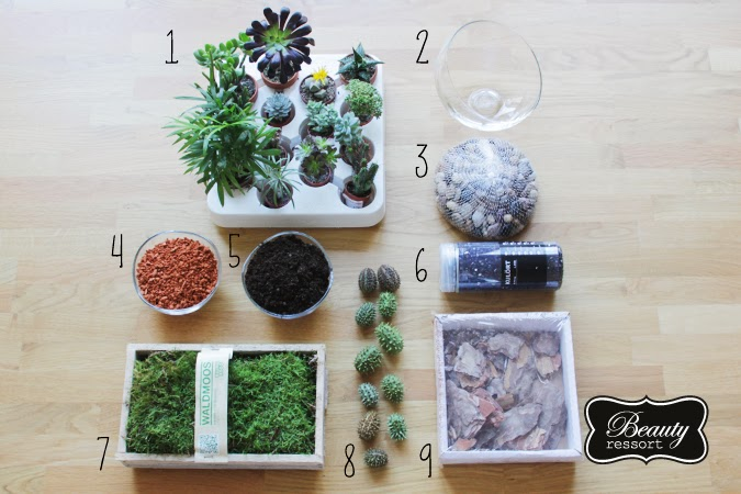 diy geschenke terrarium beautyressort. Black Bedroom Furniture Sets. Home Design Ideas