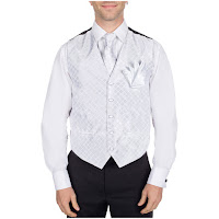 http://www.buyyourties.com/formal-vests-c-787.html?color=13