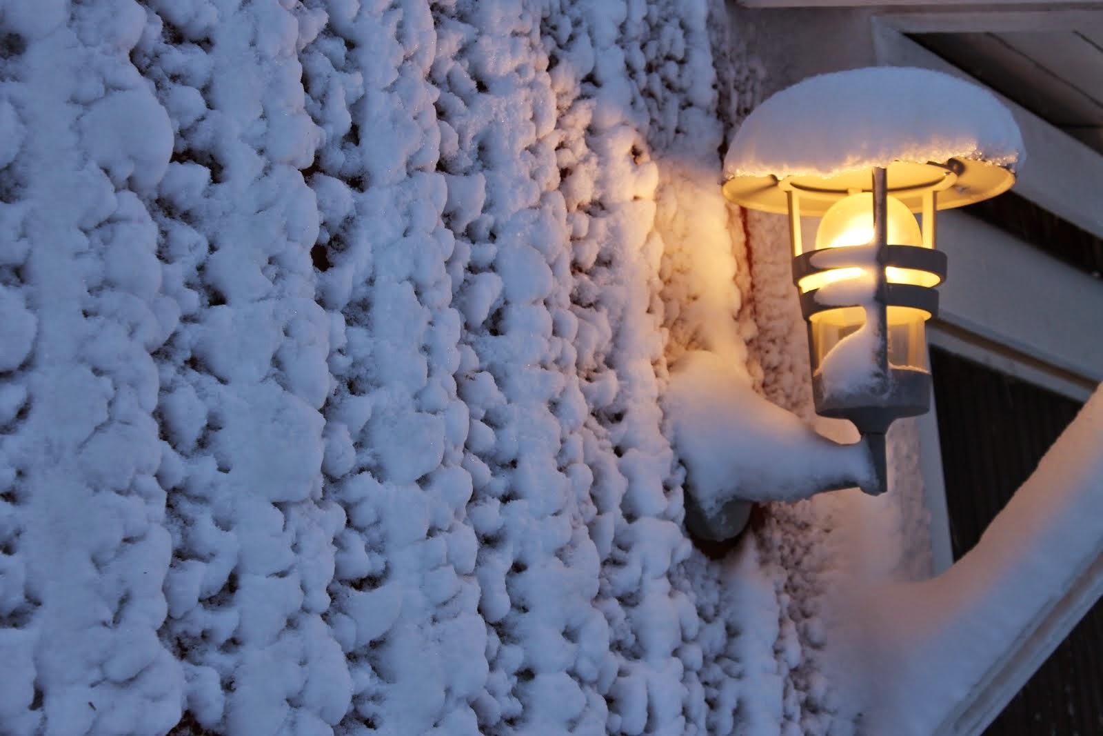 Vintervackert