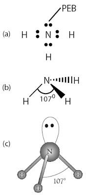 Struktur Lewis NH3 Bentuk molekul NH3 (trigonal piramidal)