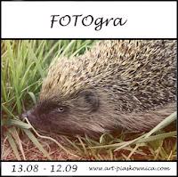 FOTOgra