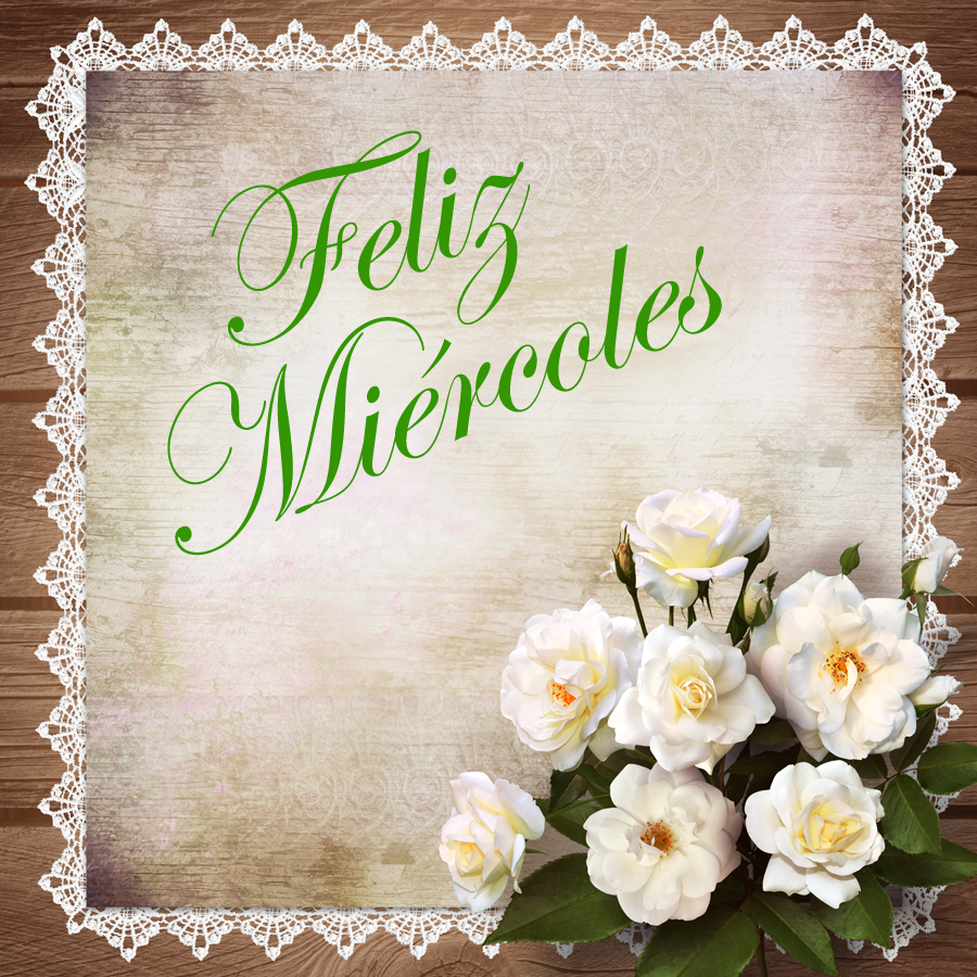 Buscar fotos: flores blancas Fotolia