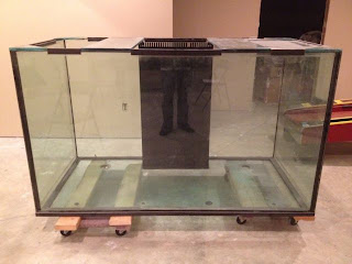Giant aquariums february 2012 for Used fish tanks for sale on craigslist