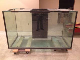 5 gallon fish tank 800 vivid aquariums photos 2017 for 150 gallon fish tank for sale craigslist