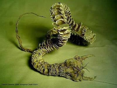 Mongolian Death worm 9 Makhluk Misterius yang Menggegerkan Dunia