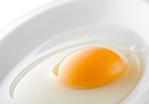 An Egg Yolk a Day Keeps the Doctor Away