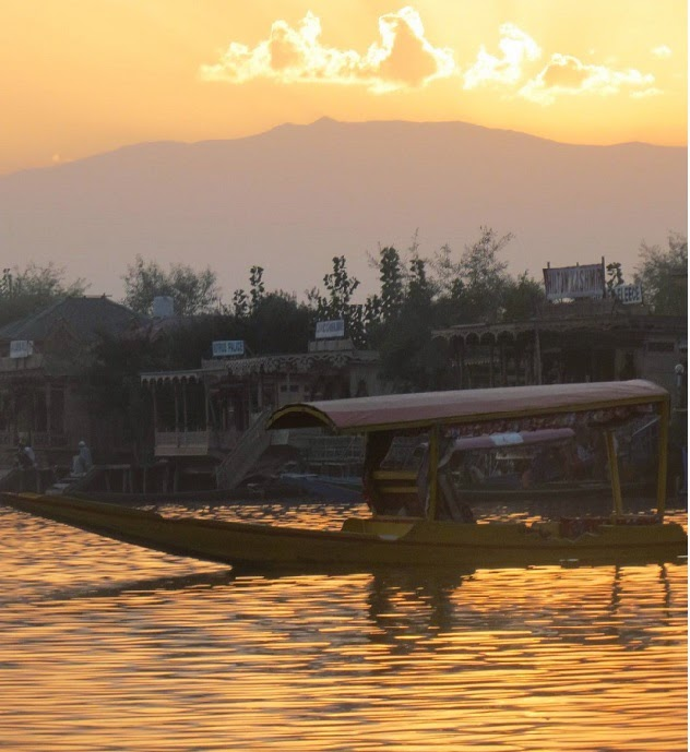 Kashmir: Shikaras in Dal Lake