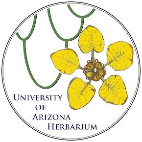 University of Arizona Herbarium