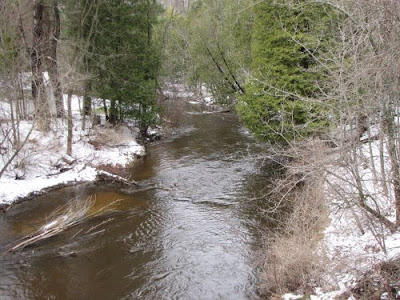 Pine River at Raymond Road