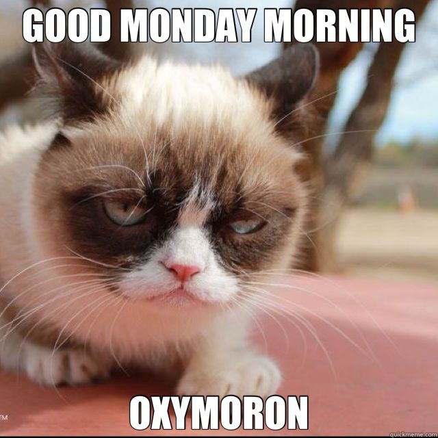 Angry Good Morning Meme : Enlightened matriarch its monday enjoy some humor