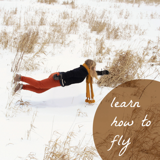 Learn to Fly - Play it now at Coolmath-Games.com