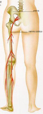 Por qué no es posible hacer el masaje a la agudización de la osteocondrosis