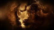 wallpaper hd abstract lion hd wallpaper