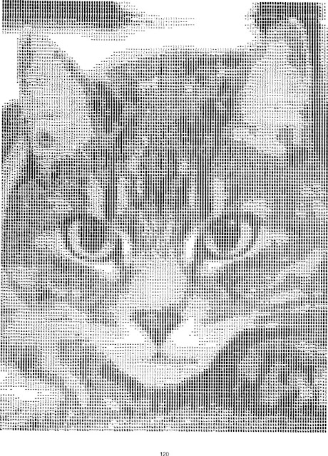 An image of a cat created out of notepad