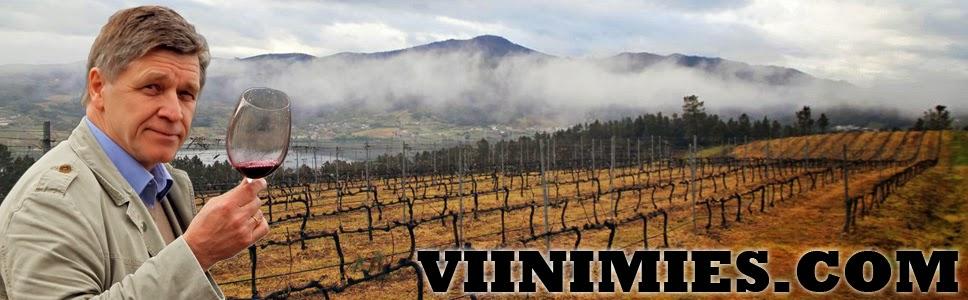 Viinimies.com - Ruoka & Viini
