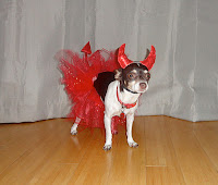 Devilish Dog Costume