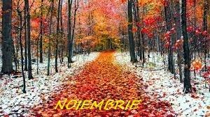Horoscop noiembrie 2014