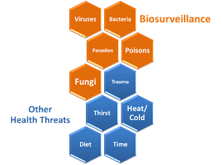 Biosurveillance and other factors in health threats.