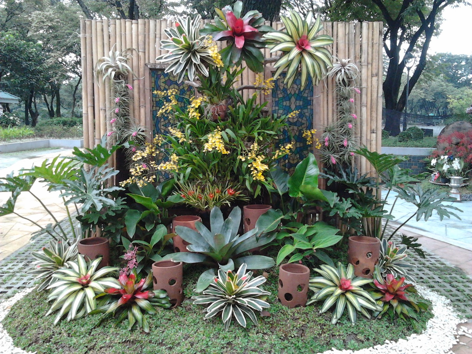 Philippine orchid events february 2015 for Pocket garden designs philippines