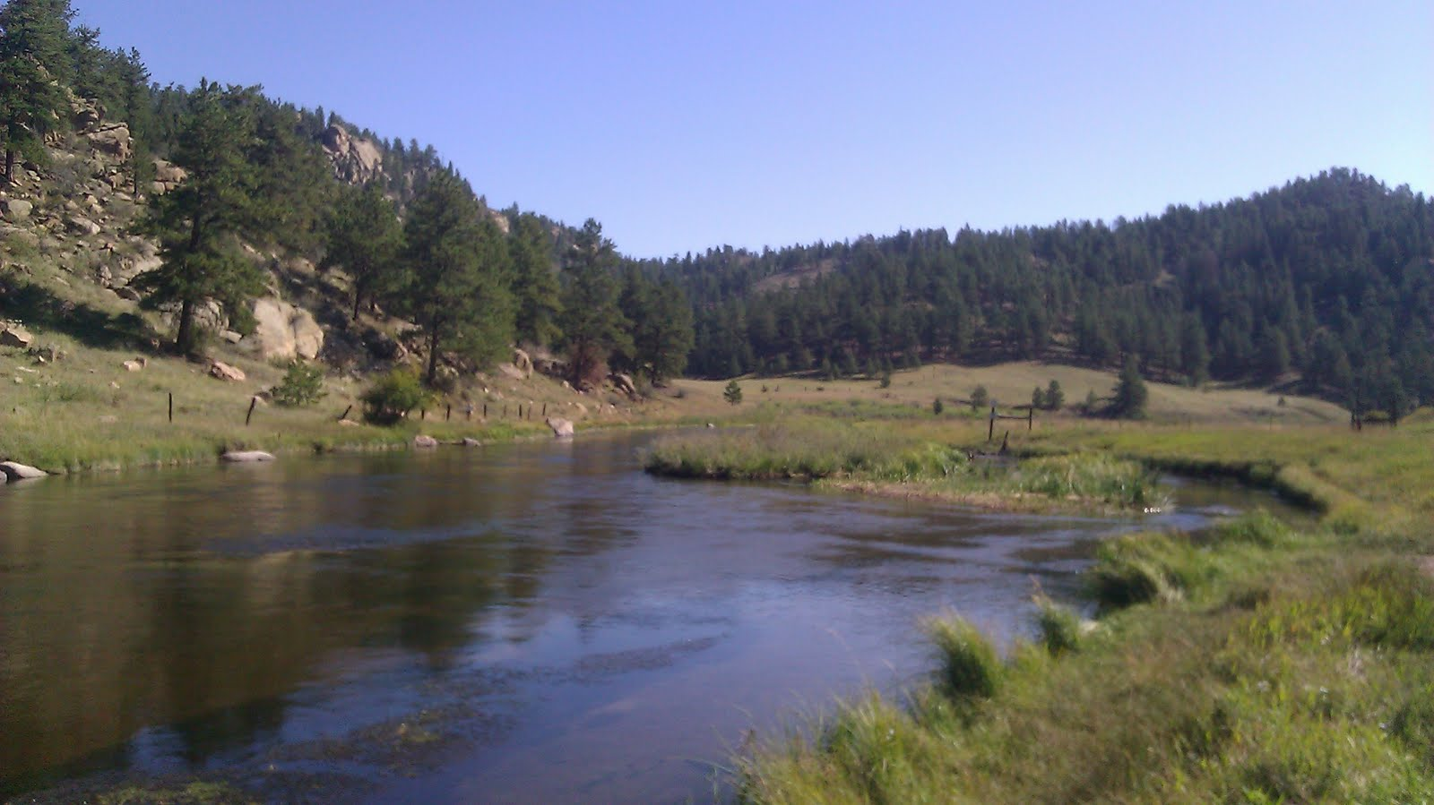 Pampers and pinot eleven mile canyon sunday selections for 11 mile canyon fishing