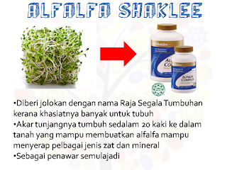 kandungan dan manfaat alfalfa