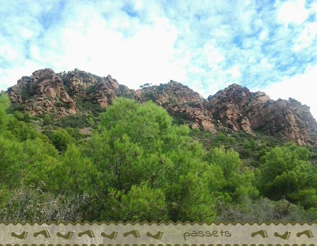 El Garbí 6 - Parc Natural de la Serra Calderona