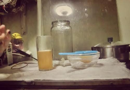 Cómo preparar Hongos Tibetanos / Tíbicos / Kefir de Agua