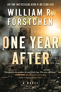 one year after a novel review