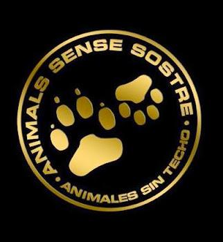 Pincha nuestro logo y VISITA NUESTRA WEB