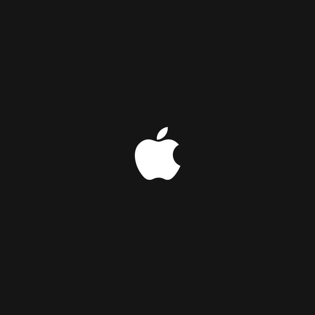 apple logo ipad amp ipad 2 wallpapers beautiful ipad