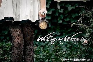 Waiting On Wednesday! (6)
